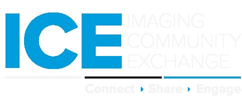 ICE_Logo