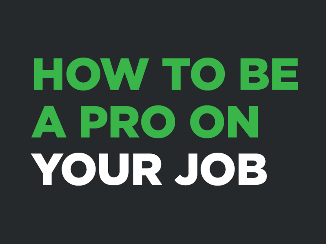 How to Be a Pro on Your Job