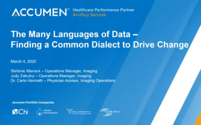 Experts Dissect the 'Languages' Data Speaks