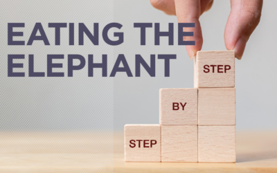 Eating the Elephant Step by Step